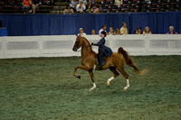 224 ASB Junior Exhibitor Three-Gaited Show Pleasure