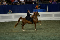 225 ASR National Three-Year-Old Futurity - Thr