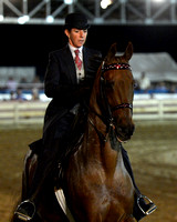 Class 57 ASB 3-Gaited Country Pleasure 18 & Under