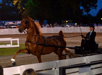72. UPHA THREE YEAR OLD FINE HARNESS CLASSIC