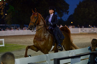 88. JUNIOR EXHIBITOR FIVE GAITED CHAMPIONSHIP
