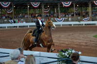 21. Ladies 3-Gaited