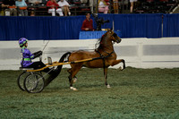 227 Junior Exhibitor Roadster Pony, Driver 14-17 Years Old