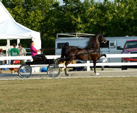 BourCoFair_12.0409