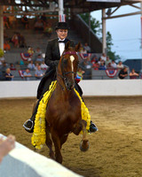 88 Three Gaited Championship