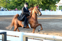 57. UPHA THREE YEAR OLD FIVE GAITED CLASSIC