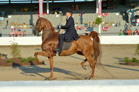 Harrodsburg12_Fri.0449