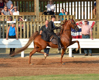 Shelbyville Horse Show - Photos are up