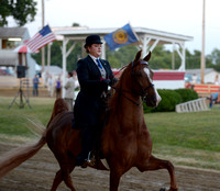 Class 53 3-Gaited ASB Pleasure Horse Amateir (18 and Under)