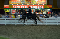 37. AMATEUR FIVE GAITED MARES