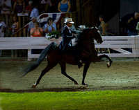 53 ....Five-Gaited Open Stake