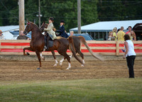 Class 36A  Walk Trot Pleasure 12 & Under