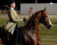 Class 40 ASB 3-Gaited Country Pleasure English Juvenile 17 and under