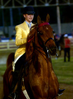 Class 38 5- Gaited ASB Pleasure Horse