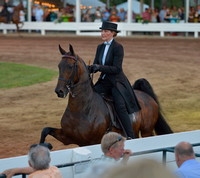 10 ....Amateur Three-Gaited