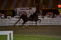 36. ADULT THREE GAITED SHOW PLEASURE