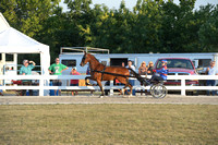 BourCoFair_12.0516