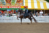 27. LADIES FIVE GAITED