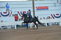 20. LADIES 5-Gaited