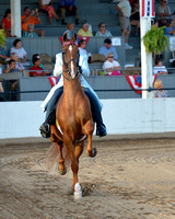 80 Amateur Three-Gaited Championship