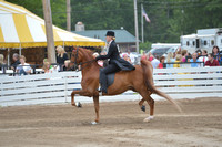 9. ADULT FIVE GAITED SHOW PLEASURE