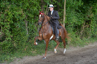 63. UPHA THREE YEAR OLD FIVE GAITED CLASSIC